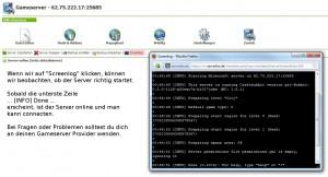 Minecraft Server Screenlog